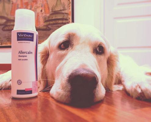allercalm - copertina vita da cane